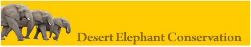 desert-elephant